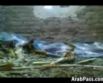 Nagy Arab Cockslut Katonákkal Kívül